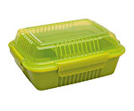 24 oz. Insulated To-Go Food Container in Lettuce