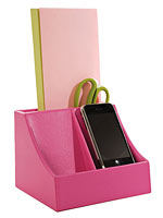 2 Pod Charging Station in Pink