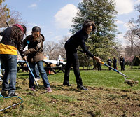 First Lady Michelle Obama gardening at The White House
