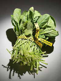 spinach tied with caution tape