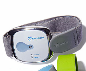 BodyMedia Fit Mobile Armband