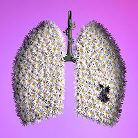 Lung cancer risks