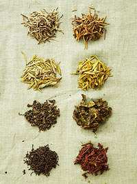 Various tea herbs