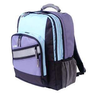 LL Bean Cyan and Purple Extended Backpack