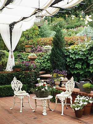 garden with white canopy