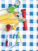 temperature taker and corn holders and baster on blue and white checkered tablecloth