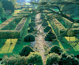 Thyme Walk at Highgrove