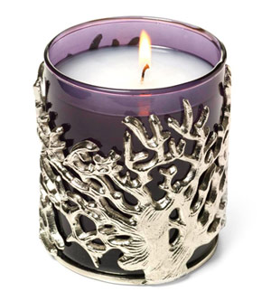 Crabtree & Evelyn India Hicks Island Night Candle