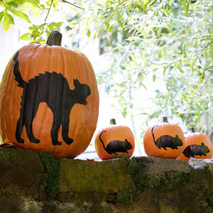 Cat and mice pumpkins