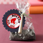 Boston Red Sox dirt