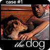 case #1: the dog
