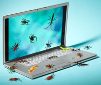 Computer with bugs