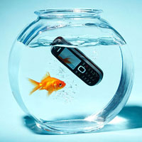 Cell phone in fish tank