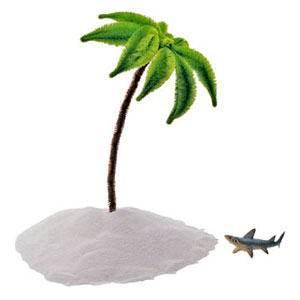 Palm tree and shark