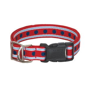 Harry barker canines for veterans collar