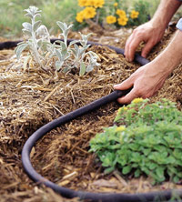 Try drip irrigation