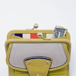 green snap purse