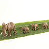toy elephants on banana leaf