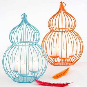 blue and orange Bird cages