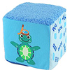 Baby Einstein Blocks Recall