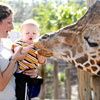 10 Best Zoos for Kids