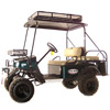 Classic Bad Boy Buggies Recall photo