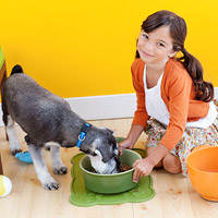 child feeding pet dog