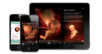Sprout Pregnancy Essentials iPhone and iPad App