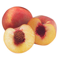 Babcock Peaches