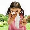 Your 365-Day Guide to Allergies and Asthma: 13 Seasonal Allergies and Symptoms