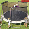 Sportspower Limited Trampolines photo