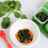 spinach puree with carrots