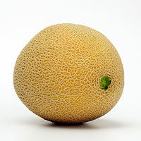 cantaloupe