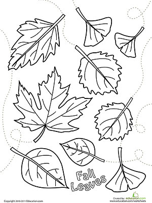 Fall leaves printable coloring page