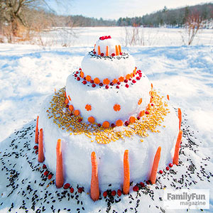 Snow cake with carrot and seed decorations