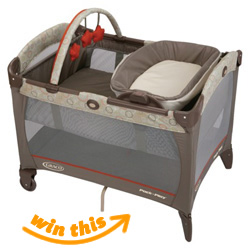 Graco Napper and Changer Playard