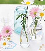 daisies in mason jars