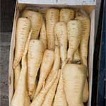 fresh_parsnips