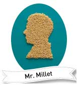 great grains millet