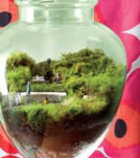 terrarium travel