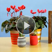 How to Make a Sock Vase Centerpiece video