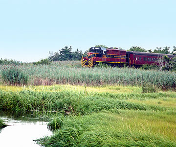 Cape Cod Central Railroad Gourmet Journeys, 2 to 3 hours