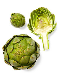 Artichokes Size Up