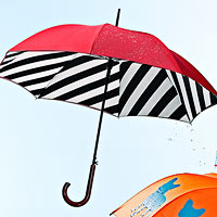 Bloomsbury Diagonal Stripe Umbrella
