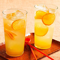 Fizzy Citrus Sodas