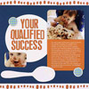your qualified success