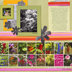 GROUP DETAIL SHOTS IN YOUR LAYOUT