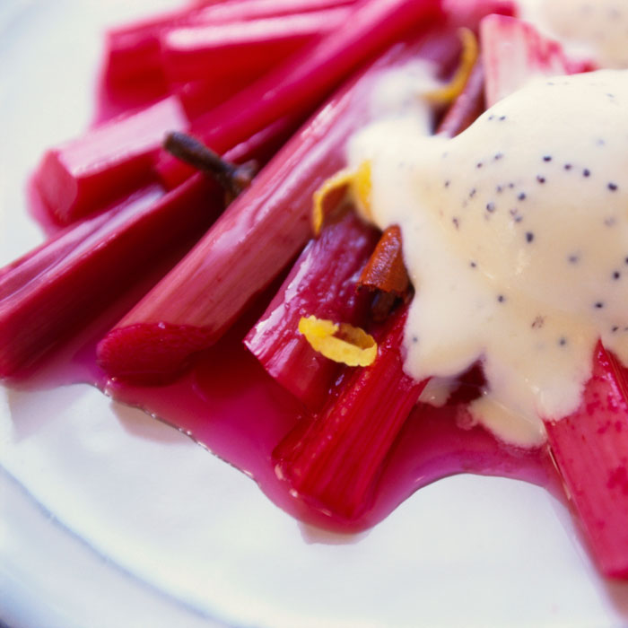 Warm Rhubarb Compote with Vanilla Yogurt Timbale