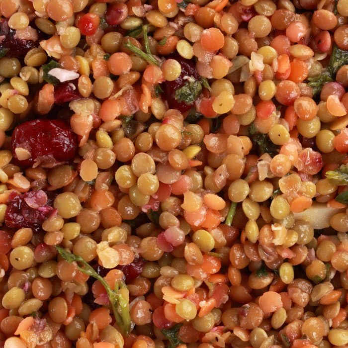 Warm Lentil Vegetable Salad with Feta, Dried Currants, and Dill