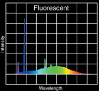 fluorescent light wavelengths